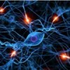 Treating chronic diseases by controlling nerve cells