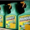 WHO IARC asked panel not to release weedkiller review documents
