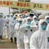 S. Korea culls thousands of birds as H5N6 avian flu outbreak cases rise to four