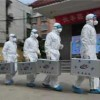 China approves four H7N9 bird flu vaccines for clinical trials