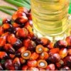 Controversy still high on palm oil's carcinogenic components