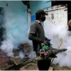 Dengue outbreak in Sri Lanka claims almost 300 lives