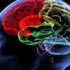 Head and neck cancer affect the cognitive functions of survivors in the long run