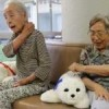 Among the elderly in Japan, robots provide friendship and care