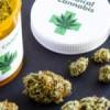 Malaysia may consider legalising medical marijuana