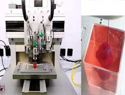 """Israeli scientists 3D print """"world-first"""" complete heart with human tissue"""