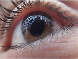 European scientists introduce new type of optic nerve stimulation for the blind