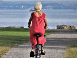 Aging reduces capillary growth in muscle in postmenopausal women