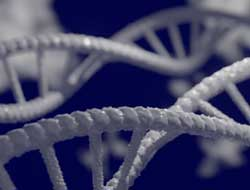 Faulty gene and an autoimmune condition linked to severe COVID-19