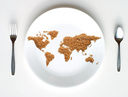 The rise of global hunger: UN warns of increasing number of undernourished